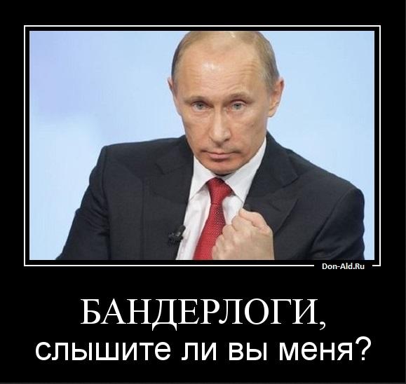 Putin 2013