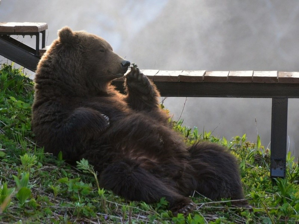 national-geographic-29