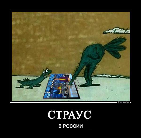 Страус в России