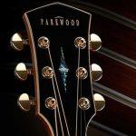 Гитары Parkwood