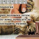 Кошачья теология