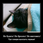 Не будить!